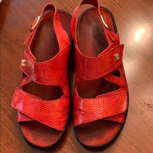 Hello comfort sandals size 41 (10)